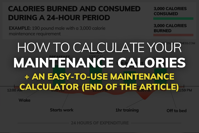 maintenance calories