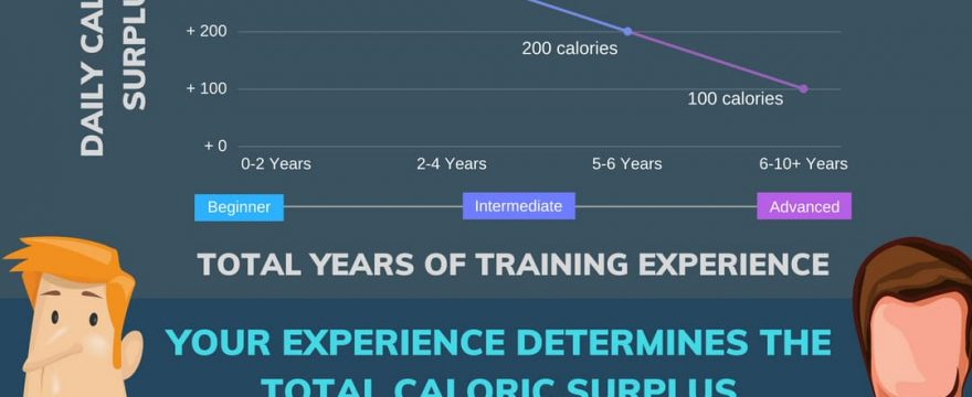 The Ideal Caloric Surplus For Muscle Gain